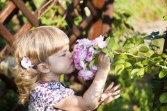 O cheiro da criança bonita aumentou fotografia de stock