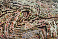 O chert dobrado mergulha na rocha do arco-íris, Oregon Imagens de Stock