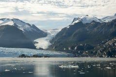 O Chile - Amalia Glacier Landscape imagem de stock