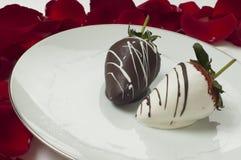 O chocolate cobriu morangos Fotografia de Stock