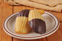 O chocolate mergulhou Madeleines Foto de Stock Royalty Free