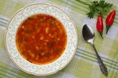 O chorba búlgaro tradicional delicioso caseiro do prumo da sopa de feijão com pimenta, tomates, cebola e especiarias, serviu com  Fotos de Stock