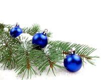 O Christmas tree! Stock Images