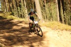 O ciclista compete na raça da elite MTB na floresta Imagens de Stock Royalty Free