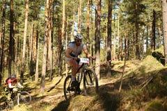 O ciclista compete na raça da elite MTB na floresta Fotografia de Stock
