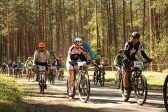 O ciclista compete na raça da elite MTB na floresta Imagens de Stock