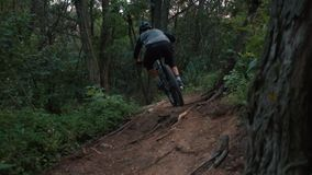 O ciclista extremo monta no trajeto de floresta, movimento lento video estoque