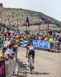 O ciclista Jan Bakelants Fotografia de Stock