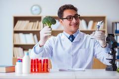 O cientista do doutor que recebe o prêmio para sua descoberta da pesquisa imagem de stock