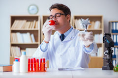 O cientista do doutor que recebe o prêmio para sua descoberta da pesquisa Foto de Stock Royalty Free