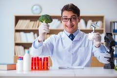 O cientista do doutor que recebe o prêmio para sua descoberta da pesquisa fotografia de stock royalty free