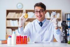 O cientista do doutor que recebe o prêmio para sua descoberta da pesquisa imagem de stock royalty free