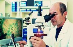 O cientista examina a biópsia Fotos de Stock Royalty Free