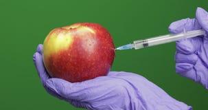 O cientista fêmea faz uma injeção com uma seringa da medicina na maçã filme
