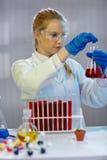 O cientista fêmea trabalha no laboratório biológico moderno fotos de stock royalty free
