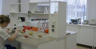O cientista novo trabalha no laboratório biológico moderno Um doutor médico ou científico fêmea do pesquisador ou da mulher que o filme