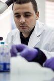 O cientista ou o pesquisador ou o aluno de doutorado tomam amostras do ADN do fla fotografia de stock