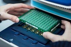 O cientista ou o pesquisador ou o aluno de doutorado tomam amostras do ADN do fla fotografia de stock royalty free