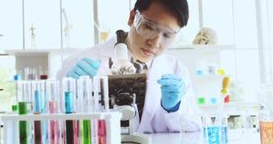 O cientista recolhe a amostra ao microscópio video estoque