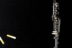 O clarinete e os juncos Fotografia de Stock Royalty Free