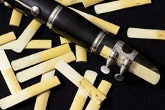 O clarinete e os juncos Imagens de Stock Royalty Free