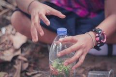 O close up aos estudantes está plantando árvores em umas garrafas plásticas fotografia de stock