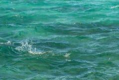 O close up da foto da superfície clara bonita da água do oceano do mar de turquesa com ponto baixo das ondinhas acena no fundo do Imagem de Stock Royalty Free