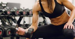 O close-up de corpo bem treinado da mulher levanta peso no gym da aptidão vídeos de arquivo