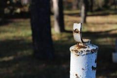 O close-up de um ferro oxidou tubo e um fundo borrado Fotografia de Stock