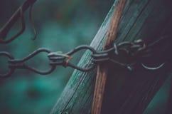 O close up de uma construção de madeira da prancha nos vinhedos guardou perto Foto de Stock