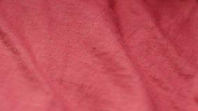 O close up disparou de um tecido de algodão misturado liso, vermelho do poliéster no matérias têxteis compra Foco da cremalheira vídeos de arquivo