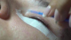 O close-up do fabricante mestre do chicote remove o óleo, preparando-se para a extensão da pestana video estoque