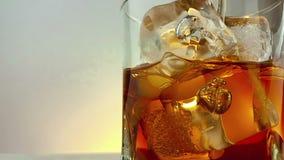 O close-up do uísque de derramamento do empregado de bar no vidro bebendo com os cubos de gelo no fundo branco morno, época de re vídeos de arquivo