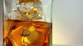 O close-up do uísque de derramamento do empregado de bar no vidro bebendo com os cubos de gelo no fundo branco morno, época de re video estoque