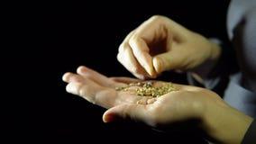 O close-up dos dedos move sementes de coentro à disposição em um fundo preto video estoque