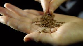 O close-up dos dedos move uma semente do linho à disposição em um fundo preto filme