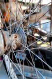 O close up oxidou as peças dos raios da roda de bicicleta Fotos de Stock Royalty Free