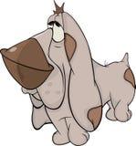 O cão de caça. Basset Hound. Desenhos animados Imagens de Stock
