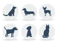 O cão do vetor produz a coleção das silhuetas no branco ícones para o cynology, a clínica do animal de estimação e a loja Fotos de Stock