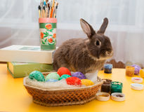 O coelhinho da Páscoa senta-se em uma tabela Fotografia de Stock