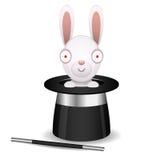O coelho senta-se no chapéu do mágico Fotografia de Stock Royalty Free