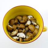 O cogumelo chinês secado fatia sae então na água Imagens de Stock