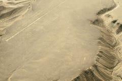 O colibri - linhas de Nasca - Peru imagem de stock royalty free