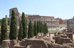 O coliseu em Roma entre as ruínas e os ciprestes Foto de Stock
