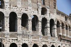 O coliseu, Roma Fotos de Stock