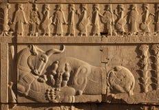 O combate do leão contra Bull cinzelou na parede da escadaria de ruínas de Persepolis Imagem de Stock Royalty Free