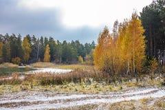O começo do inverno do russo Sibéria, a costa do O foto de stock