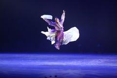 A 10o competição da dança do festival de arte de China, coreana Imagens de Stock Royalty Free
