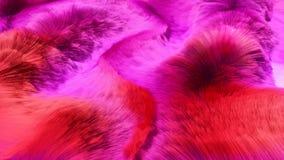 O comprimento vermelho e cor-de-rosa colorido do cabelo atapeta o fundo rendido 3D Front View ilustração royalty free