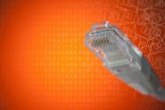 O conceito da conexão ao Internet Close-up da tomada RJ45 imagem de stock